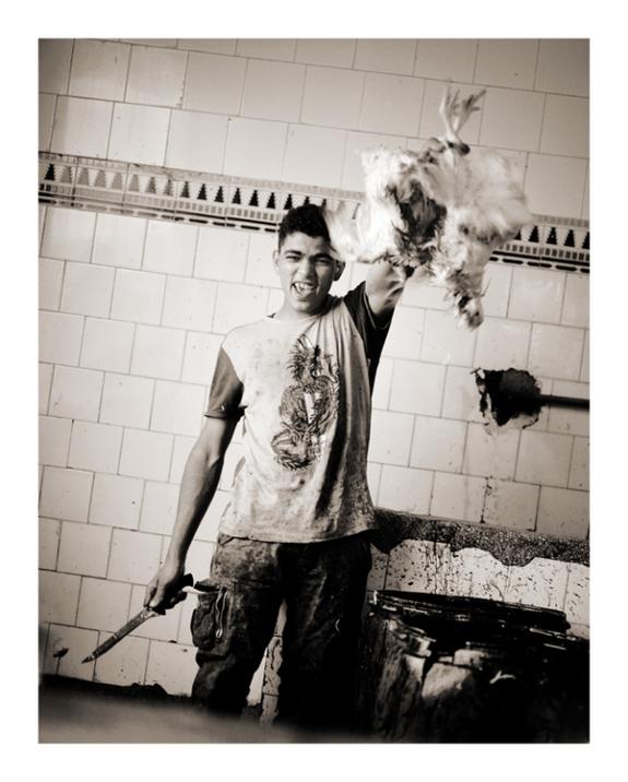 Wad/Danielsen Photography AS - Gutt slakter høne
