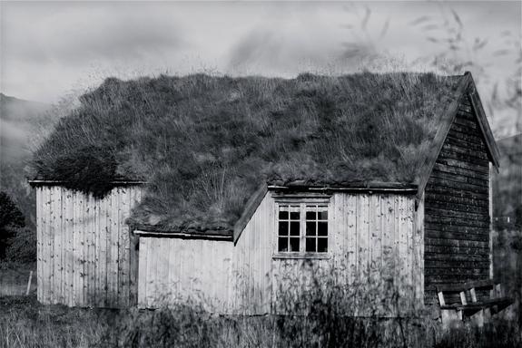 Liv Fuglset Ditlefsen - Gamle hus II