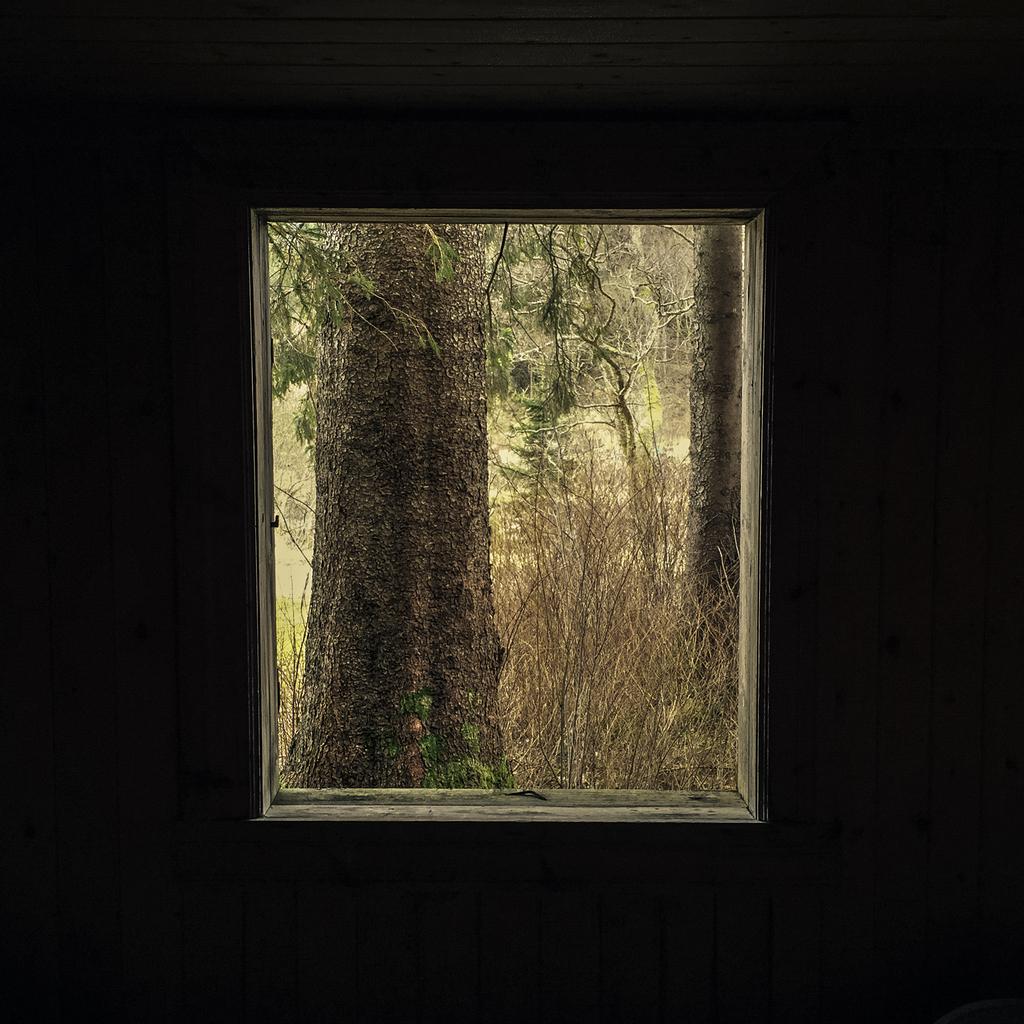 Gjennom mitt vindu