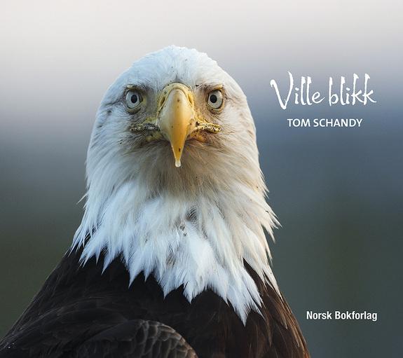 Tom Schandy -