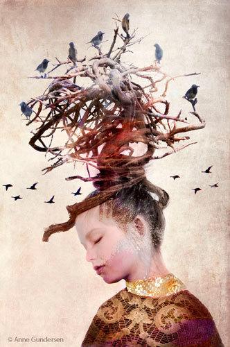 Anne Gundersen - Fly like a bird