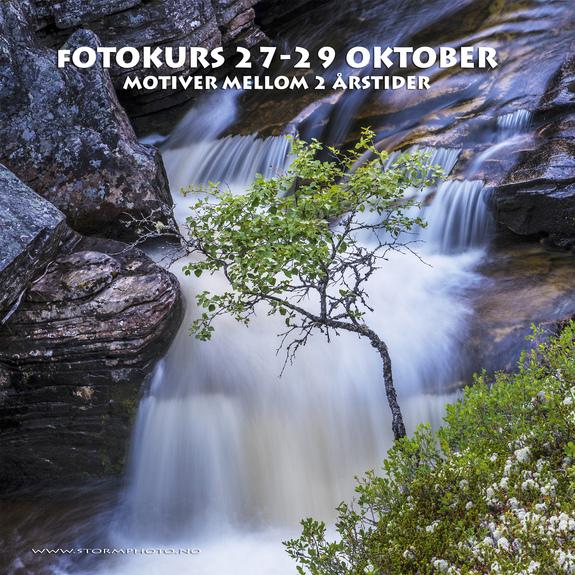 Alle fotos; Fotograf Olav Erik Storm -