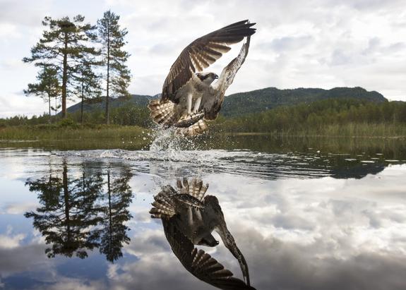 Foto: Jostein Hellevik / NNPC -