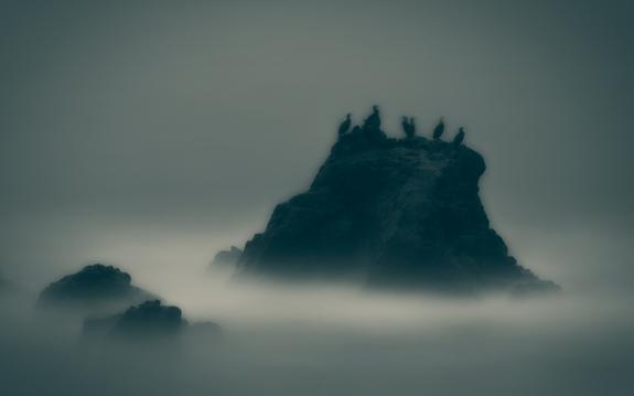 Foto: Arnfinn Johnsen - The Cormorant Stone/Skarvesteinen