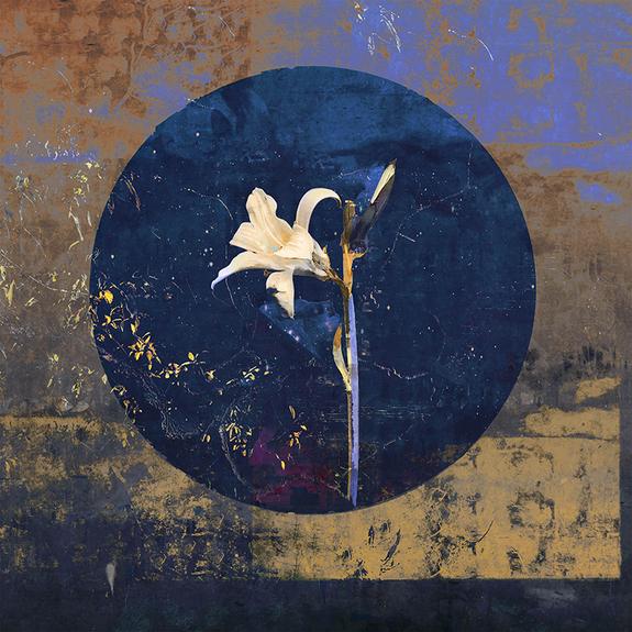 Maria Natalie Skjeset - Lily of the Night