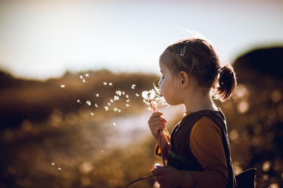 Foto: Suzan Kosak - Blåse på løvetannfrø for å få et magisk ønske.