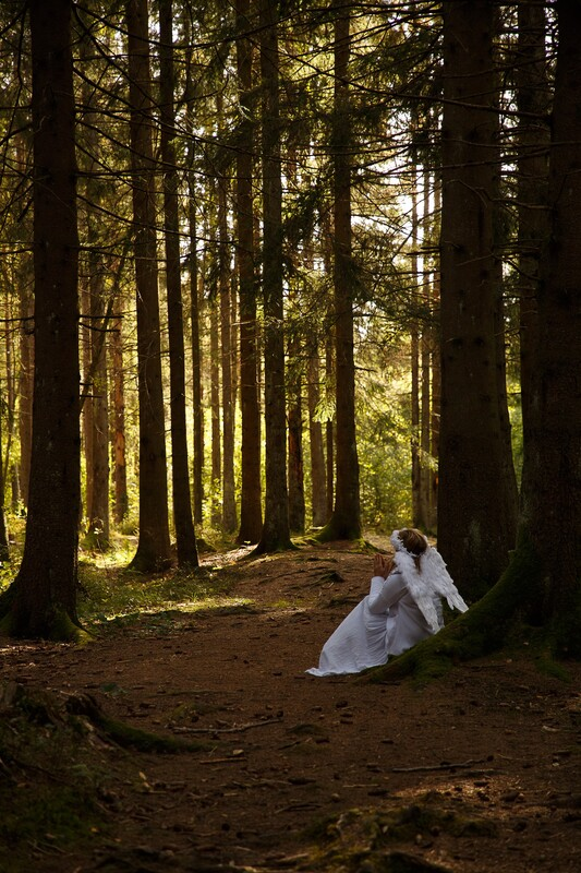Foto: Inga Losiewics - Fairytale forest