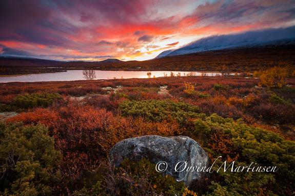 Øyvind Martinsen - Kurs i landskapsfotografering