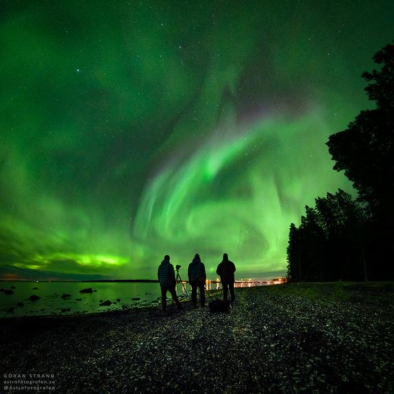 Foto: Göran Strand -